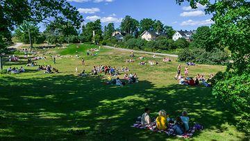 pikniksuomenlinna