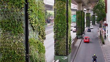 via verde screencap