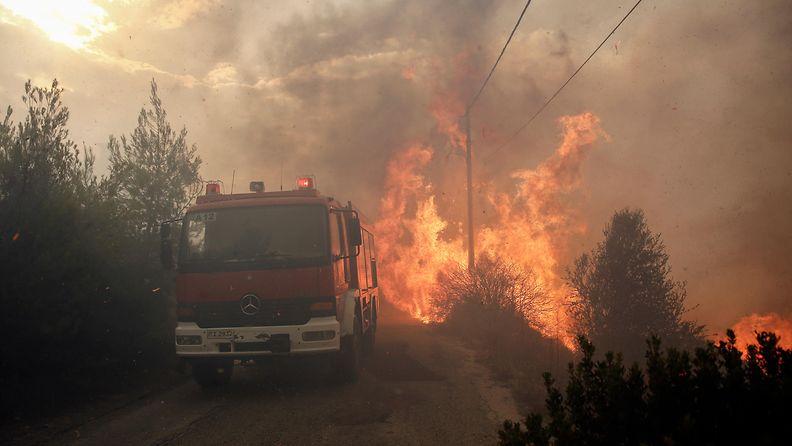 kreikka metsäpalo maastopalo (8)