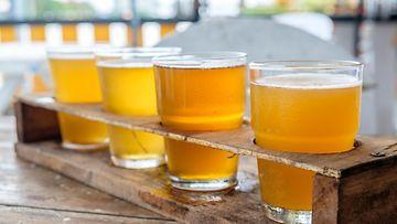 olut olutlasi