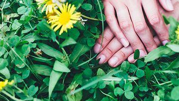 kädet, nurmikko, seksi