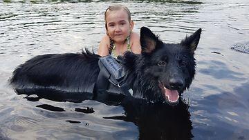 kaisla_koira