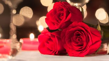 treffit, ruusut