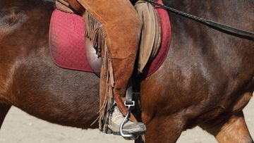 Hevonen ratsastus issikkavaellus AOP