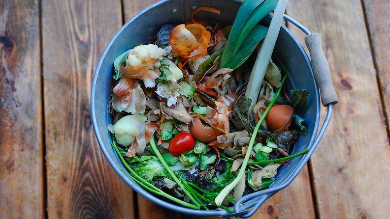 Ruoka hävikki bio komposti roskis