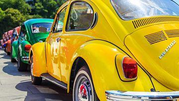 volkswagen beetle, kupla