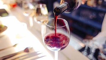 viini viinipullo ravintola