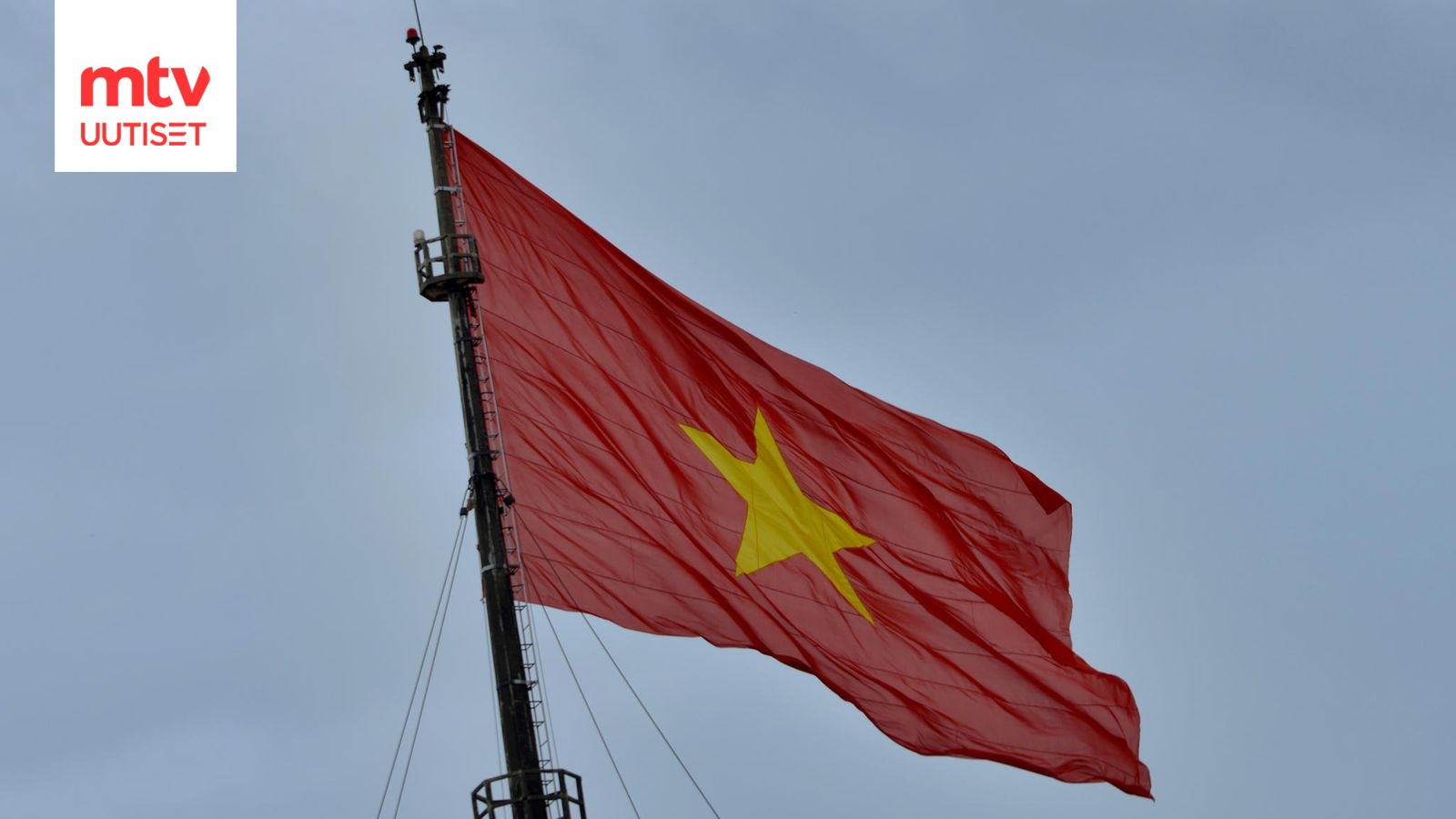 Vietnam Lippu