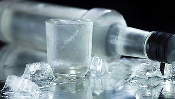 vodka juoma alkoholi