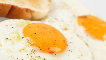 paistettu kananmuna