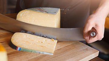 juusto juustot