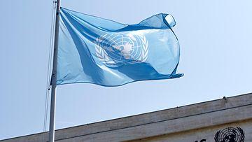 YK lippu