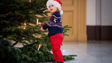 Carl Philip ja prinssi Alexander joulu (1)