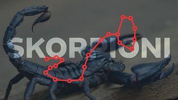 skorpioni