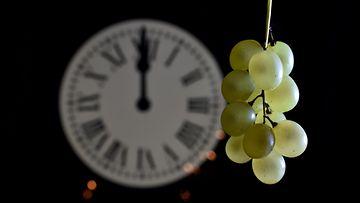 12 viinirypälettä