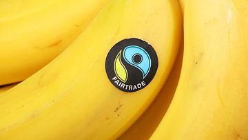 banaani reilu kauppa