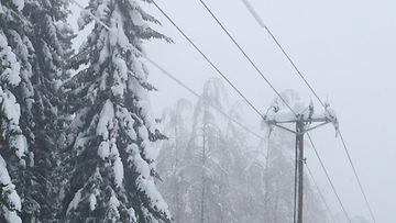 AOP sähkökatkot sähkökatkos sähkökatkokset sähkö sähköjohdot lumi tykkylumi 1.03764087
