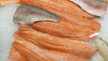 AOP kala kalat kalatuotanto kalastus kirjolohi lohi 1.03841433