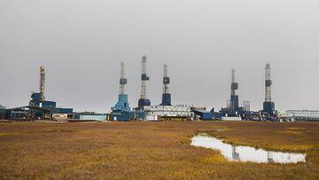 AOP, öljynporaus, öljy, tehdas, alue, yhdysvallat, alaska