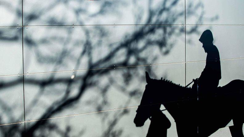 AOP, hevonen, ratsastaja, talli