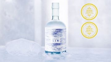 artic blue gin