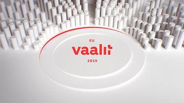 eu_vaalit_nettigraffa