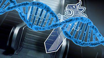 DNA-poliisi-rikos-tuomio
