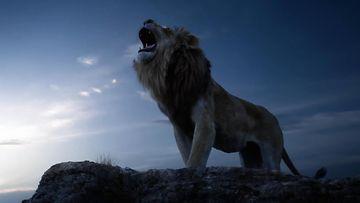 Leijonakuningas 2019 (1)