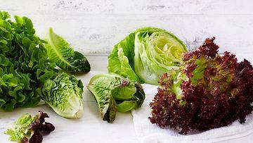 Salaatti salaatit