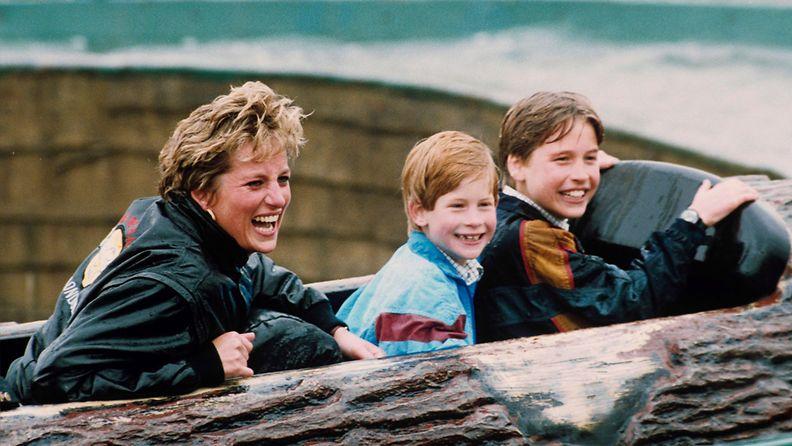 prinsessa Diana prinssi Harry prinssi William 1993