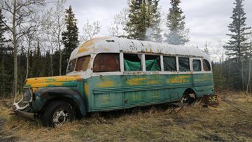 bussi christopher mccandless