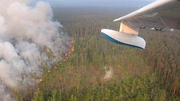 AOP Venäjä metsäpalo