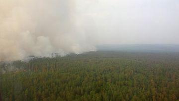 AOP metsäpalo Venäjä