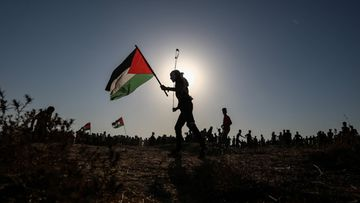 AOP Palestiina, Gaza