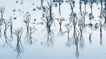 kenia tulva kuvitus