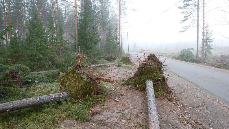 AOP myrsky puut kaatuneet sää