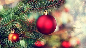 joulukuusi, koriste