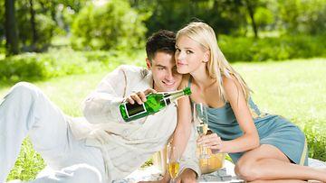 pariskunta, piknik, samppanja