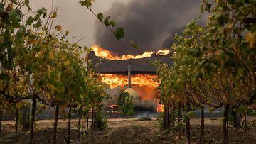 2510 Kalifornia maastopalot EPA (1)