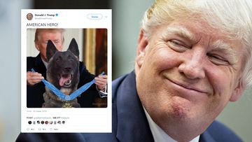 twitter-Trump