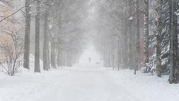 lumi kuvituskuva katu Helsinki 1 2019