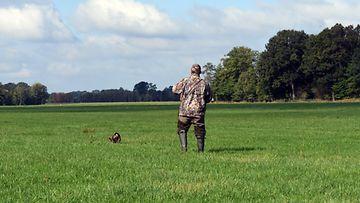 aop metsästyskoira