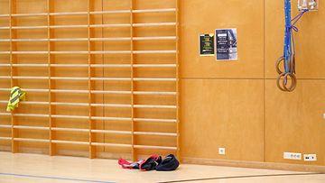 koulu urheilu koulu-urheilu liikunta koululiikunta kuvituskuva puolapuut