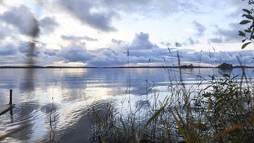 aop järvi, maisema, Lieksa