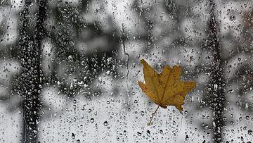 AOP sade, sateet, loska, räntä, syksy, talvi, ikkuna