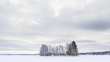 aop Pohjois-Karjala, talvi, järvi