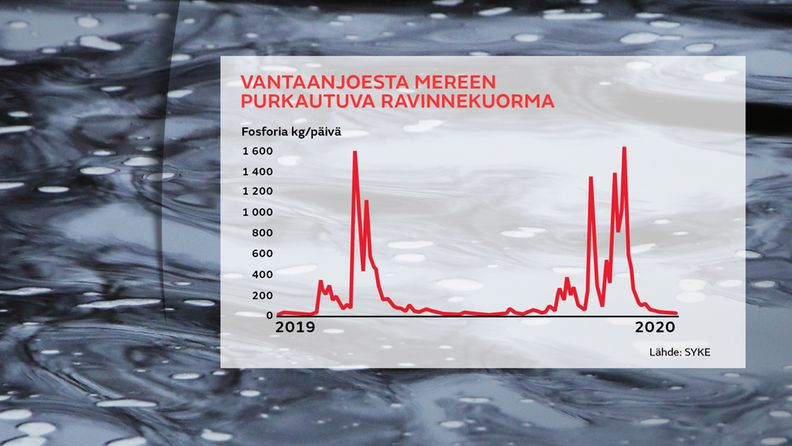 Vantaanjoki graffa