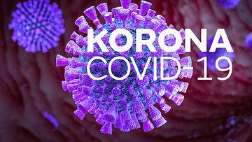 2401-korona-2019-nCov