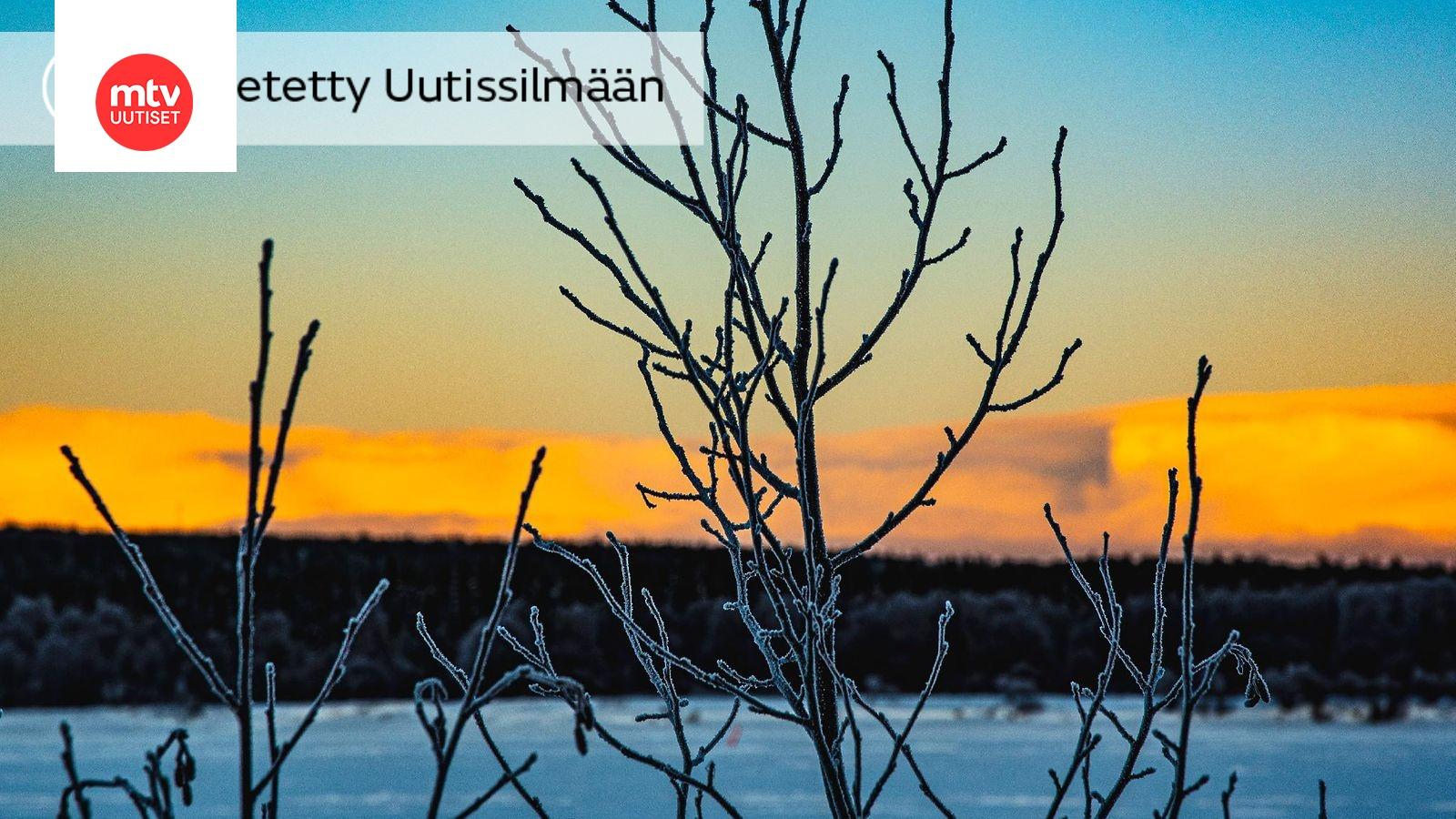 Kuolonkolari Rovaniemellä
