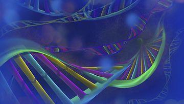 DNA, Geeni (AOP)